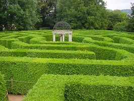 Symonds Yat Hedge Maze